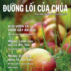 Activated Magazine in Vietnamese