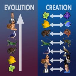 Creation vs evolution's lies